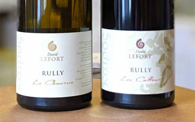 Rully rouge Les Cailloux 2017 ou Rully blanc La Chaume 2017 – David Lefort